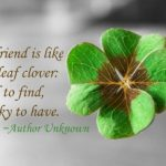 Best Friend Quotes for Girls (13)