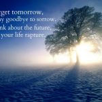Good Day Quotes (15)
