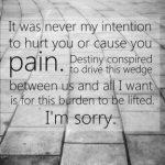 I'm-Sorry-Quotes-for-Him_05