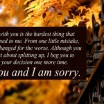 I'm-Sorry-Quotes-for-Him_17