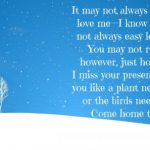 I Miss You Quotes for Him (24)