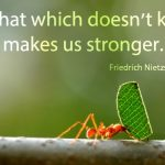 Inspirational Quotes and Sayings (11)
