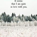 Romantic Love Quotes (37)