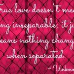 Romantic Love Quotes (41)